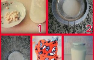 Nohut  İle Yapılan Organik Yoğurt Mayası ( 6 Ay ve üzeri)
