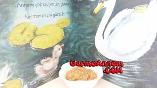 Havuçlu Şehriye Yemeği ( 7 ay ve üzeri )