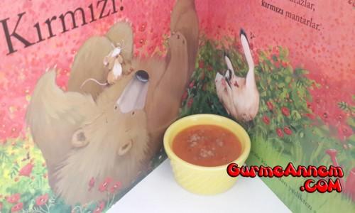 Bebeklere Domates Çorbası ( 1 yaş ve üzeri )
