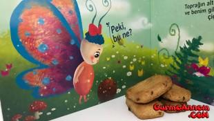 Ev yapımı bebek bisküvisi ( 8 ay ve üzeri )